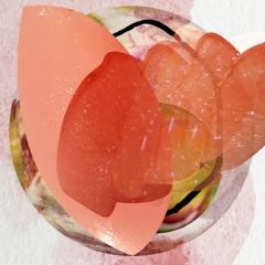 Tempier-Bandol-Rose-2016